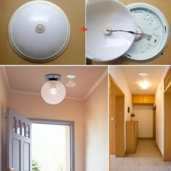 LED PIR Detector Infrared Human Body Motion Sensor Switch 25mm, AC220V, Imported From USA