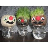 Grow Grass Head, Grow A Head-Excellent Gift,100% imported-On 50% Off Rate